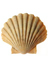 Commercial shellfish diving in inshore water: Diving at Work Regulations 1997